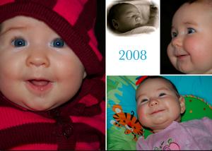 2008 Collage.jpg